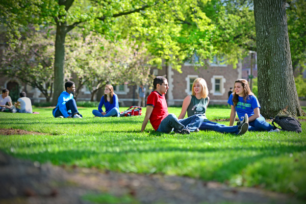 groups of students sit in the grass under tall trees